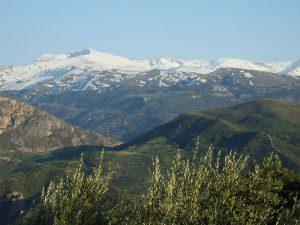 Pico de Veleta